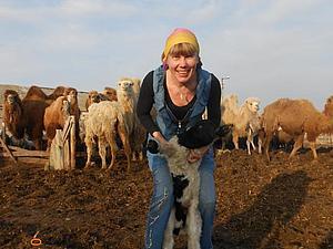 Не легкая жизнь фермера. | Ярмарка Мастеров - ручная работа, handmade