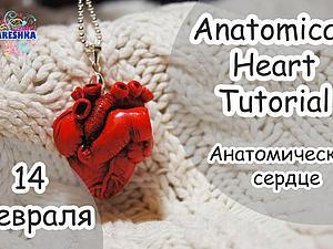 Лепим анатомическое сердце из полимерной глины — классный подарок ко Дню влюбленных. Ярмарка Мастеров - ручная работа, handmade.