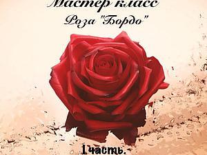 """Создаем розу """" Бордо"""" из полимерной глины. I часть. Ярмарка Мастеров - ручная работа, handmade."""