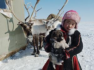 Праздники народов Севера: День оленевода | Ярмарка Мастеров - ручная работа, handmade
