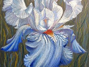 Рисуем голубой ирис масляной пастелью. Ярмарка Мастеров - ручная работа, handmade.
