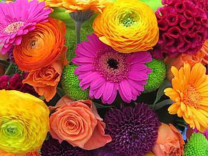 Уникальная красота и безграничное многообразие цветочного мира   Ярмарка Мастеров - ручная работа, handmade