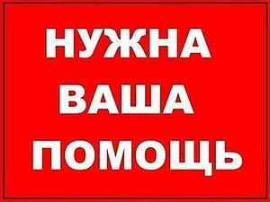 Благотворительный аукцион для мастера Михаила Ломова! | Ярмарка Мастеров - ручная работа, handmade