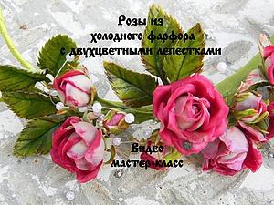 Видеоурок: лепим розы из холодного фарфора с двухцветными лепестками. Ярмарка Мастеров - ручная работа, handmade.