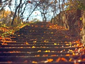 Осенняя прогулка | Ярмарка Мастеров - ручная работа, handmade