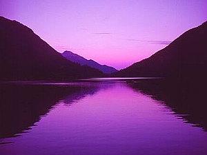 Цвет сиреневый и лиловый