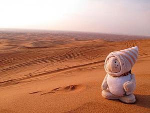 Арабские сказки или как мы путешествовали... вместе, снова)   Ярмарка Мастеров - ручная работа, handmade