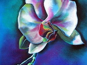 Индивидуальный он-лайн МК по рисованию пастелью! | Ярмарка Мастеров - ручная работа, handmade