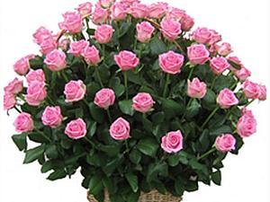 59 Роз в корзине.   Ярмарка Мастеров - ручная работа, handmade