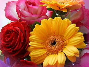 Язык цветов - для желающих сделать подарок | Ярмарка Мастеров - ручная работа, handmade