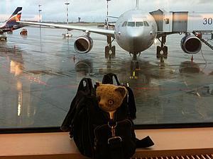 Как кот до Гибралтара и обратно путешествовал. Часть 2. | Ярмарка Мастеров - ручная работа, handmade