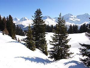 Швейцарская зимняя сказка | Ярмарка Мастеров - ручная работа, handmade
