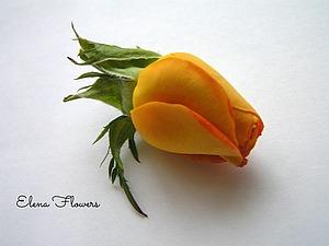 Живая роза.Для цветоделия пример. | Ярмарка Мастеров - ручная работа, handmade