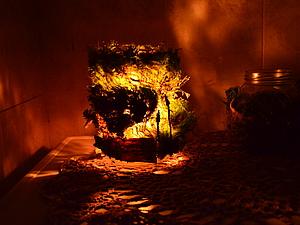 """Создание подсвечника """"Лесной фонарик"""". Ярмарка Мастеров - ручная работа, handmade."""