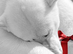 Подарок - Сладкая Конфетка - Розыгрыш от Ошмянской Ларисы   Ярмарка Мастеров - ручная работа, handmade