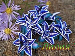 Видеоурок: лилия из полимерной глины. Ярмарка Мастеров - ручная работа, handmade.