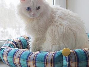 Мастерим ложе для любимого котика | Ярмарка Мастеров - ручная работа, handmade
