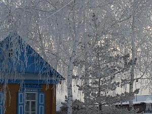 Белая береза под моим окном..... | Ярмарка Мастеров - ручная работа, handmade