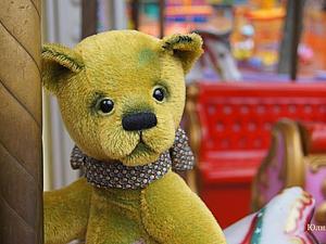 Курс «Секреты оформление головы мишки Тедди» | Ярмарка Мастеров - ручная работа, handmade