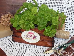 Декор ящика «Анютины глазки» с разделителями для семян. Ярмарка Мастеров - ручная работа, handmade.
