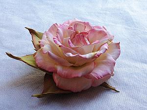 Розу для начинающих мастер класс