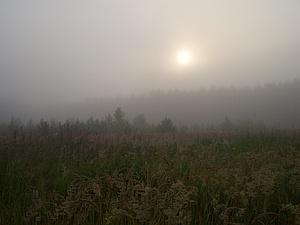 Утренний туман. | Ярмарка Мастеров - ручная работа, handmade