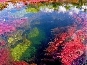 Самые красивые водные пейзажи мира!   Ярмарка Мастеров - ручная работа, handmade