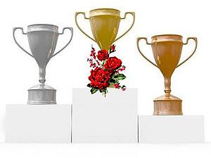 Награждение победителей. Результаты розыгрыша КОНФЕТКИ. | Ярмарка Мастеров - ручная работа, handmade