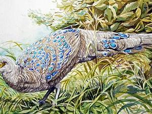 """Пишем картину """"Павлиний фазан"""" акварелью. Ярмарка Мастеров - ручная работа, handmade."""
