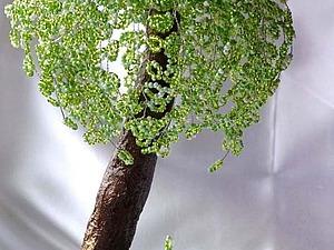 Создаем дерево «Весенняя свежесть» из бисера. Ярмарка Мастеров - ручная работа, handmade.