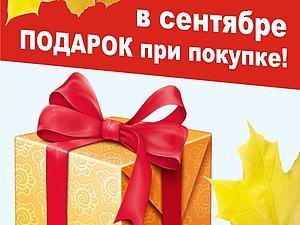 Акция весь сентябрь! Подарок при покупке! | Ярмарка Мастеров - ручная работа, handmade