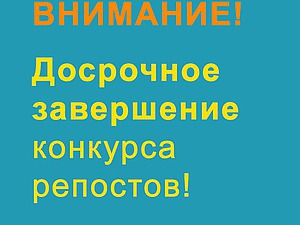Досрочное завершение конкурса репостов! | Ярмарка Мастеров - ручная работа, handmade