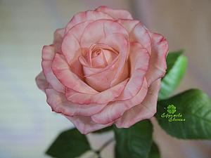 Полноразмерные розы - акция! | Ярмарка Мастеров - ручная работа, handmade