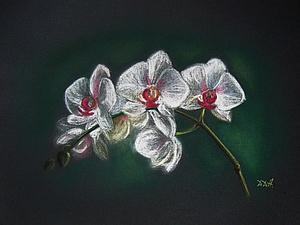 Рисуем орхидеи пастелью. Ярмарка Мастеров - ручная работа, handmade.