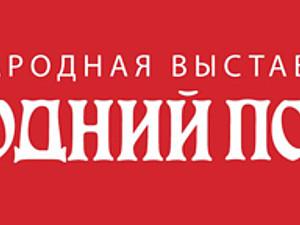 Ищу 1 человека для совместного участия в выставке (СПб) | Ярмарка Мастеров - ручная работа, handmade