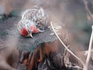 О благовещенье и маленьких птичках. | Ярмарка Мастеров - ручная работа, handmade