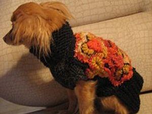 Описание пальто в технике фриформ для собачки   Ярмарка Мастеров - ручная работа, handmade