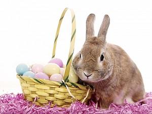 Пасхальный кролик | Ярмарка Мастеров - ручная работа, handmade