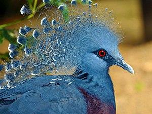 Синие птицы удачи | Ярмарка Мастеров - ручная работа, handmade