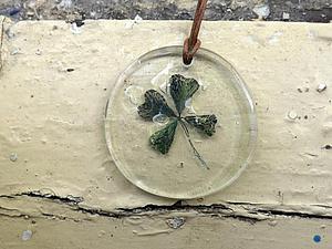 Делаем «Гербарий» в стекле. Ярмарка Мастеров - ручная работа, handmade.