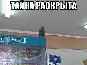 Почта России - верь в лучшее!   Ярмарка Мастеров - ручная работа, handmade