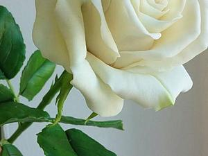 Мастер -класс Роза | Ярмарка Мастеров - ручная работа, handmade