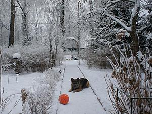 Последнее утро старого года в моем саду | Ярмарка Мастеров - ручная работа, handmade