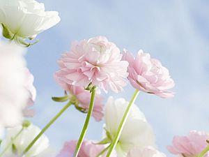 Вдохновляемся природой: создаем гармоничный образ с помощью весенних цветов в одежде. Ярмарка Мастеров - ручная работа, handmade.