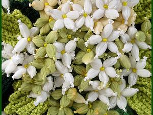 Цветы из пряжи.  handmade