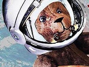 1июля - 30 сентября Выставка авторских медведей