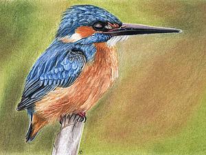 Рисуем зимородка | Ярмарка Мастеров - ручная работа, handmade