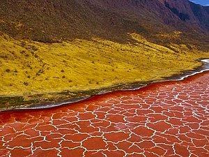 Красно-розовое озеро в Танзании | Ярмарка Мастеров - ручная работа, handmade