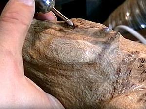 Видео мастер-класс: обработка дерева алмазными борфрезами. Ярмарка Мастеров - ручная работа, handmade.