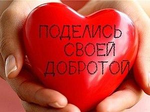 ЗАКРЫТ! Прием работ для третьего благотворительного аукциона в поддержку Миши Пухтинова.  Нефротичес   Ярмарка Мастеров - ручная работа, handmade